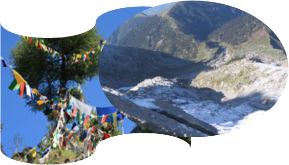 Trek to Triund  Snow Line Tour